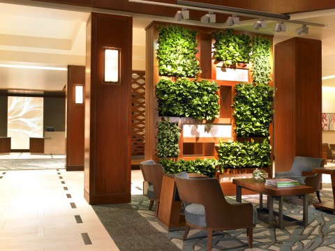 Westin Hotels & Resorts creates a modern day oasis in lobbies.