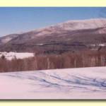 pan_winter[1]
