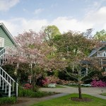 Pine_Crest-Gardens (6)-XL