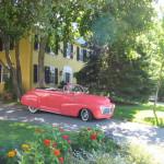 Elms & pink car – Copy