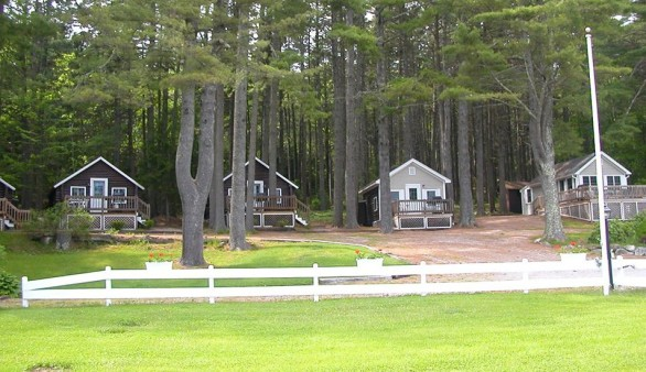 maine cottages for sale in coastal lincolnville pine