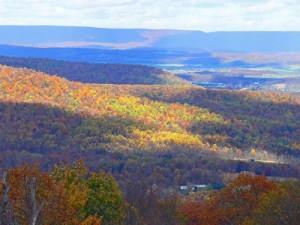 Carlisle PA Cumberland Valley