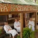 9 CedarFalls