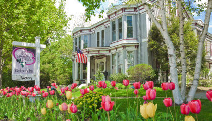 Premier Camden Maine In-Town Bed and Breakfast