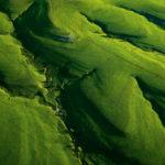 Flint Hills of Kansas