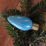 Jan's single bulb
