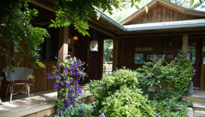 Eureka Springs Cabins for sale