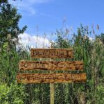 Devonfield trails