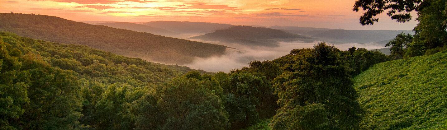 Photo of Arkansas Landscape