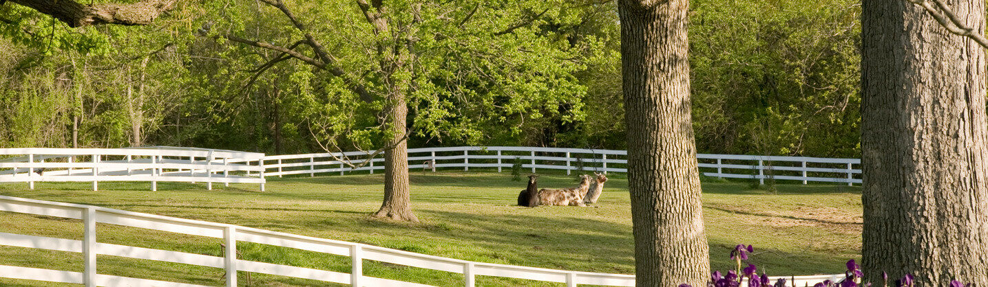 Photo of grounds at Missouri inn for sale