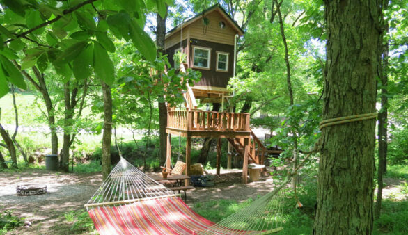 Illinois Ozarks Treehouse and Log Cabin Resort for Sale